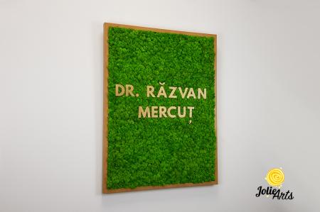 Logo Dr. R.M. decorat cu licheni naturali [3]
