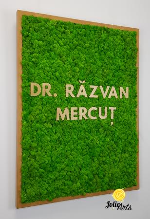 Logo Dr. R.M. decorat cu licheni naturali [4]