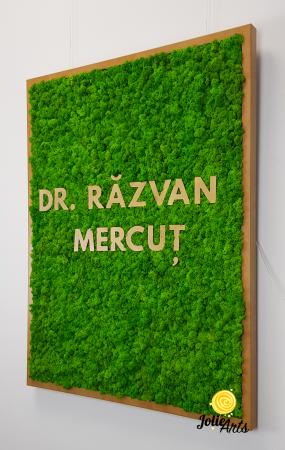 Logo Dr. R.M. decorat cu licheni naturali [5]