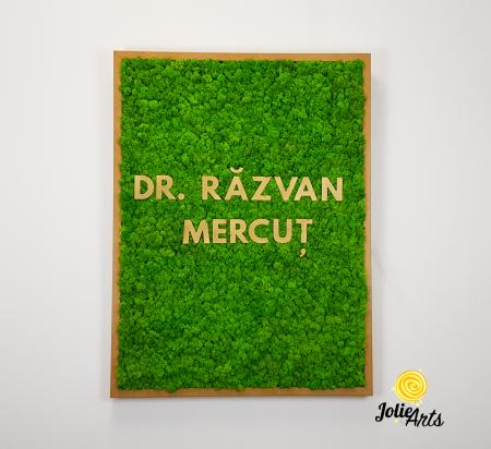 Logo Dr. R.M. decorat cu licheni naturali [2]