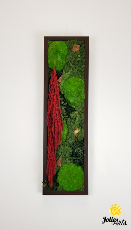 Tablou licheni, muschi si plante naturale stabilizate, Model Amaranthus 2, Jolie Arts, www.tablouriculicheni.ro-5 [2]