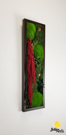 Tablou licheni, muschi si plante naturale stabilizate, Model Amaranthus 2, Jolie Arts, www.tablouriculicheni.ro-5 [1]