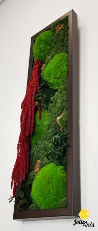 Tablou licheni, muschi si plante naturale stabilizate, Model Amaranthus 2, Jolie Arts, www.tablouriculicheni.ro-5 [4]