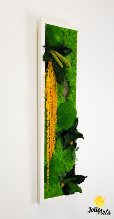 Tablou licheni, muschi si plante naturale stabilizate, Model Amaranthus galben, design vertical, 20 x 80 cm, rama neagra, Jolie Arts, www.tablouriculicheni.ro-3 [3]