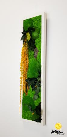 Tablou licheni, muschi si plante naturale stabilizate, Model Amaranthus galben, design vertical, 20 x 80 cm, rama neagra, Jolie Arts, www.tablouriculicheni.ro-3 [1]
