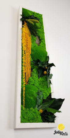 Tablou licheni, muschi si plante naturale stabilizate, Model Amaranthus galben, design vertical, 20 x 80 cm, rama neagra, Jolie Arts, www.tablouriculicheni.ro-3 [4]