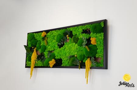 Tablou licheni, muschi si plante naturale stabilizate, Model Amaranthus galben, 40 x 100 cm, rama neagra, Jolie Arts, www.tablouriculicheni.ro-3 [1]