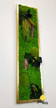 Model Amaranthus Verde Personalizat [4]