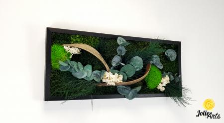 Model Aris, tablou muschi, plante stabilizate si decor natural-4 [1]