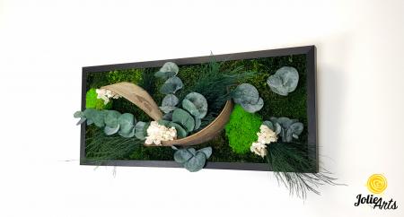 Model Aris, tablou muschi, plante stabilizate si decor natural-4 [0]