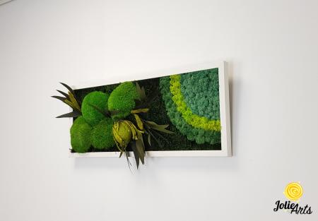 Model Banskia, 30 x 70 cm, rama alba, Jolie Arts, www.tablouriculicheni.ro-2 [1]