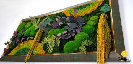 Tablou licheni, muschi si plante stabilizate, Model Curcubeu Galben, rama personalizata [2]