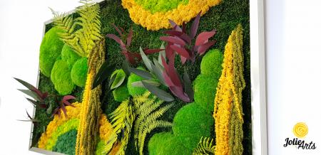 Model Curcubeu Galben, muschi de padure, plante conservate si licheni naturali stabilizati [6]