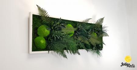 Tablou muschi si plante naturale stabilizate, Model Exotic, Jolie Arts, www.tablouriculicheni.ro-6 [2]