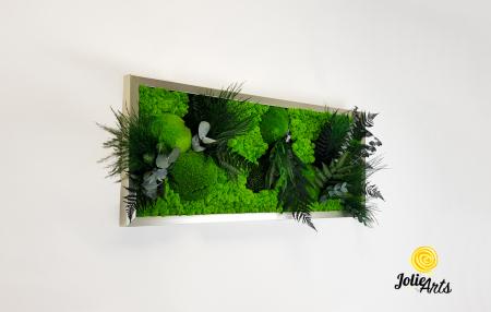 Model Green Day cu Licheni [3]