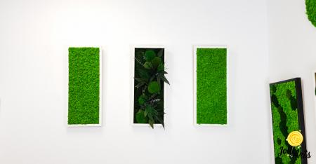 Model Green Day, set 3 tablouri dimensiune 30 x 70 cm [4]