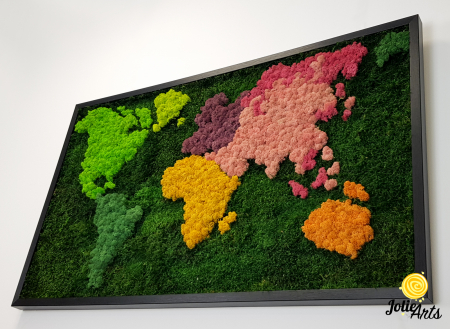Tablou licheni, muschi plati, Model Harta, dimensiune 60 x 100 cm, rama culoare natur, Jolie Arts, www.tablouriculicheni.ro-3 [5]