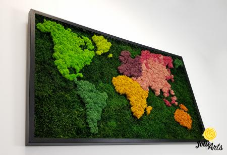 Tablou licheni, muschi plati, Model Harta, dimensiune 60 x 100 cm, rama culoare natur, Jolie Arts, www.tablouriculicheni.ro-3 [4]