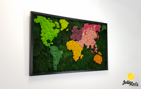Tablou licheni, muschi plati, Model Harta, dimensiune 60 x 100 cm, rama culoare natur, Jolie Arts, www.tablouriculicheni.ro-3 [3]