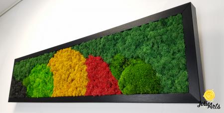 Tablou licheni si muschi naturali stabilizati, Model Jamaica, dimensiune 20 x 80 cm, rama neagra-2 [5]