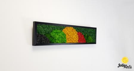 Tablou licheni si muschi naturali stabilizati, Model Jamaica, dimensiune 20 x 80 cm, rama neagra-2 [3]