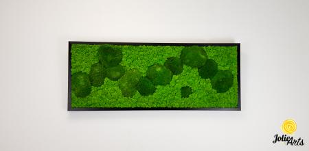 Model Muschi Bombati Verde Deschis si Licheni Naturali Stabilizati [2]