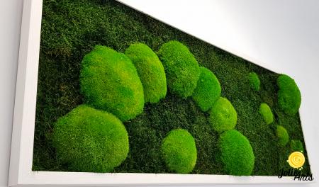 Model muschi naturali stabilizati de padure, dimensiune 40 x 100 cm, rama alba, Jolie Arts, www.tablouriculicheni.ro-2 [5]