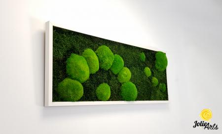 Model muschi naturali stabilizati de padure, dimensiune 40 x 100 cm, rama alba, Jolie Arts, www.tablouriculicheni.ro-2 [3]