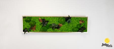 Tablou licheni, muschi si plante naturale stabilizate. Model Mushrooms, Jolie Arts, www.tablouriculicheni.ro-2 [2]
