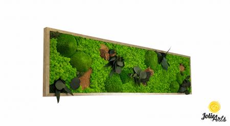 Tablou licheni, muschi si plante naturale stabilizate. Model Mushrooms, Jolie Arts, www.tablouriculicheni.ro-2 [0]