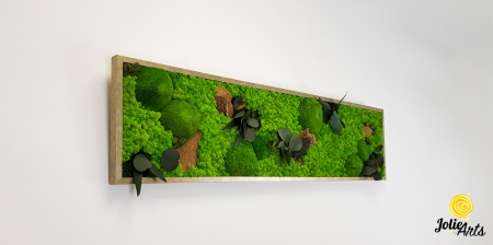 Tablou licheni, muschi si plante naturale stabilizate. Model Mushrooms, Jolie Arts, www.tablouriculicheni.ro-2 [3]