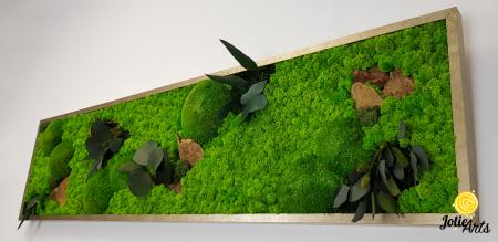 Tablou licheni, muschi si plante naturale stabilizate. Model Mushrooms, Jolie Arts, www.tablouriculicheni.ro-2 [5]