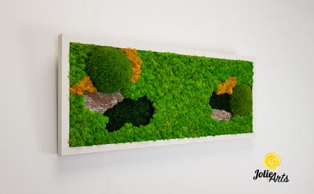 Tablou licheni, muschi si scoarta pin [3]