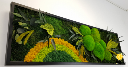 Model Soare clasic: muschi de padure, licheni stabilizati si plante naturale conservate. [4]