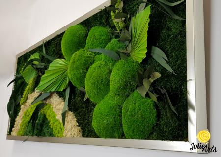 Tablou licheni, muschi si plante naturale stabilizate Jolie Arts, model Soare Alb, rama argintie, 40 x 100 cm, www.tablouriculicheni.ro-3 [4]