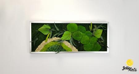 Tablou licheni, muschi si plante naturale stabilizate Jolie Arts, model Soare Alb, rama argintie, 40 x 100 cm, www.tablouriculicheni.ro-3 [2]