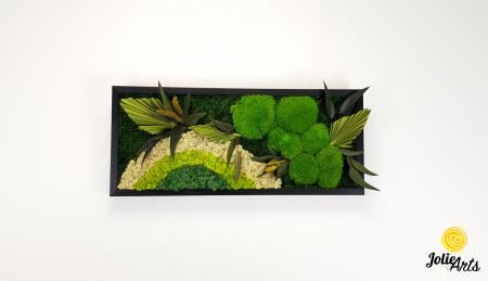 Model Soare cu alb, 30 x 70 cm, rama neagra, tablou licheni, Jolie Arts, www.tablouriculicheni.ro-2 [1]
