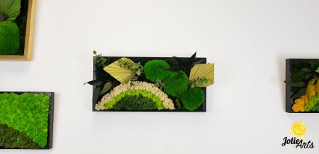 Model Soare cu alb, 30 x 70 cm, rama neagra, tablou licheni, Jolie Arts, www.tablouriculicheni.ro-2 [2]