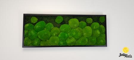 Tablou muschi bombati si plati naturali stabilizati, Jolie Arts, dimensiune 40 x 100 cm, rama neagra, www.tablouriculicheni.ro-2 [2]