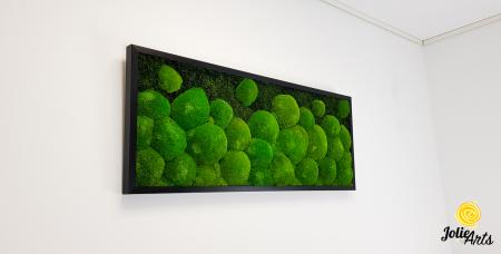 Tablou muschi bombati si plati naturali stabilizati, Jolie Arts, dimensiune 40 x 100 cm, rama neagra, www.tablouriculicheni.ro-2 [1]