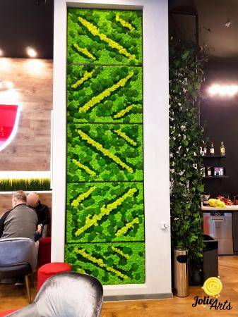 Panouri decorative cafenea, licheni, muschi bombati, plante naturale stabilizate [1]
