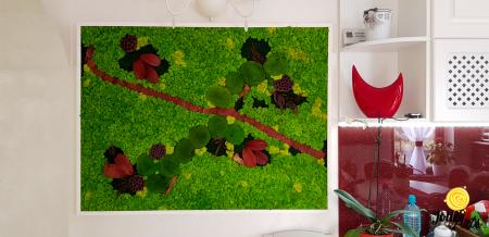 Tablou licheini, muschi si plante naturale stabilizate Jolie Arts [0]