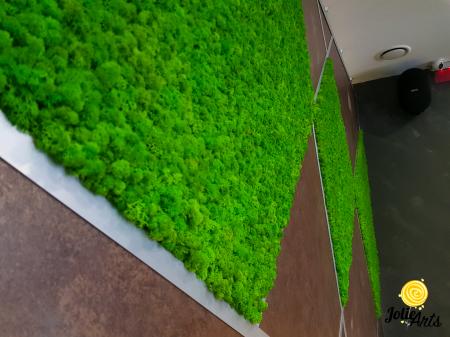 Panouri decorative cu licheni naturali Jolie Arts, Urban GYM [2]