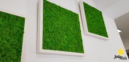 Set 3 tablouri cu licheni naturali stabilizati Jolie Arts, dimensiune 40 x 40 cm [2]