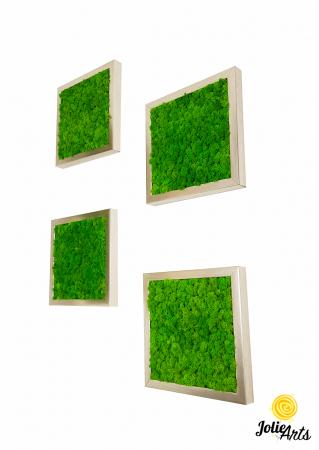 Set 4 tablouri cu licheni naturali stabilizati Jolie Arts [0]
