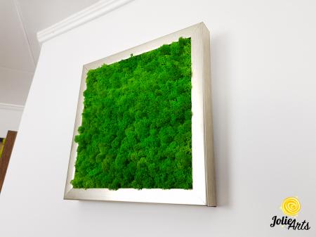 Set 4 tablouri cu licheni naturali stabilizati Jolie Arts [5]