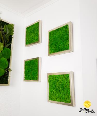 Set 4 tablouri cu licheni naturali stabilizati Jolie Arts [1]