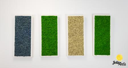 Set 4 tablouri cu licheni naturali stabilizati, dimensiune 30 x 70 cm [3]