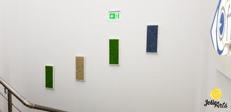 Set 4 tablouri cu licheni naturali stabilizati, dimensiune 30 x 70 cm [1]