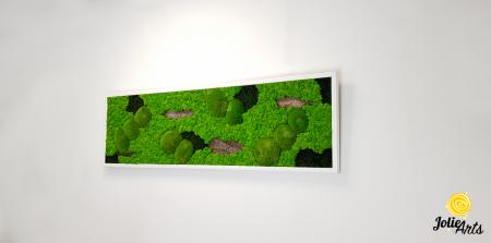 Tablou cu licheni, muschi si elemente naturale stabilizate, Model Scoarta [3]